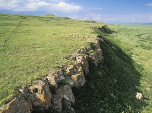 buffalo-jump_485x340